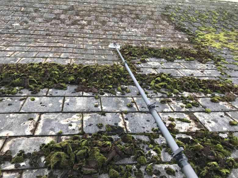 mos op het dak verwijderen